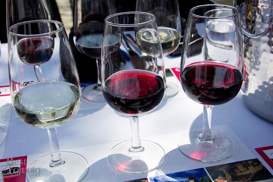 Beaujolais-Wine-Acadian-BBQ-BestofToronto-011