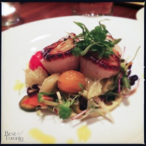 Roasted Nova Scotia Scallops