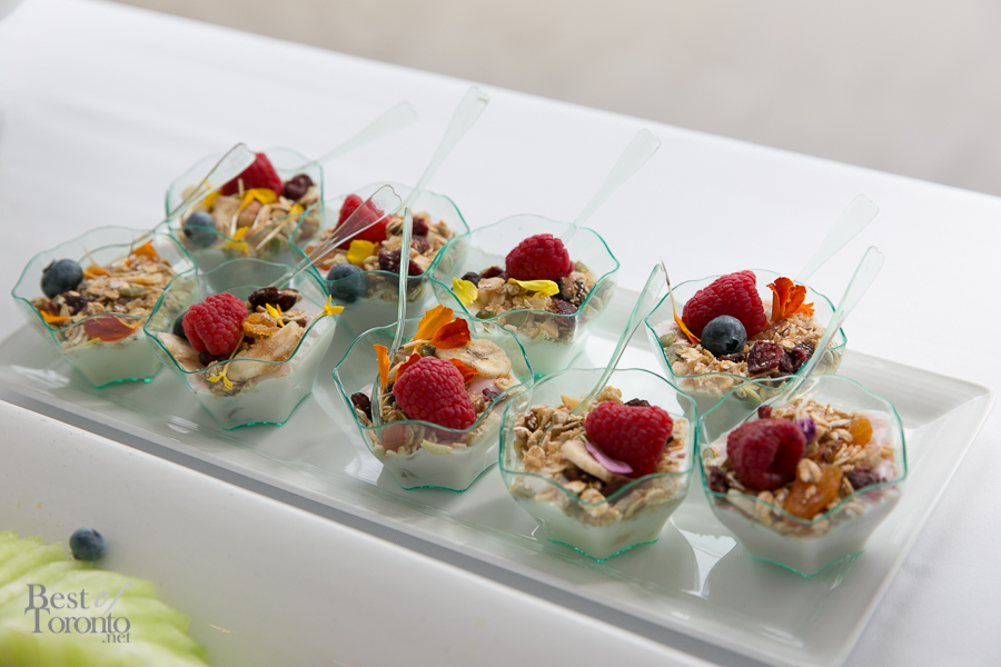 Mini fruit, granola and yogurt cups