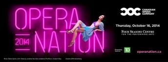 operanation-2014-light-up-the-night-coc
