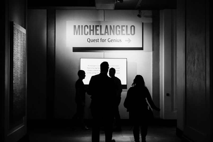 Michelangelo: Quest for Genius