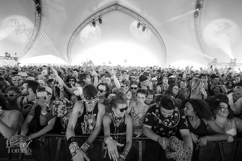 The crowd at Kill The Noise at the Bacardi tent