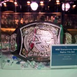 Silent auction item: an authentic WWE championship belt