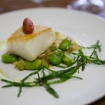 Pan Roasted Halibut with Cucumber Yogurt, Dill & Fava Beans (Paired with Rosehall Run 2013 Righteous Dude Riesling)