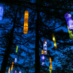 """Montréal en Lumière"" Montreal's Festival of Lights at Montreal Botanical Garden"
